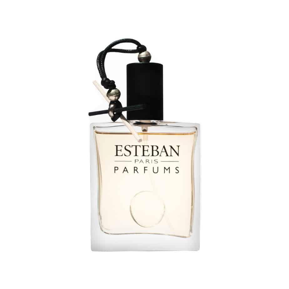 Esteban Paris BOIS PLUME bott